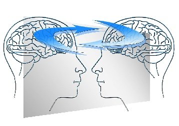 échanges cerveaux
